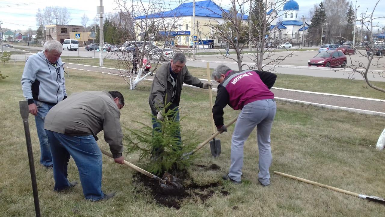 приняли участие в акции посади дерево инстаграмме сейчас